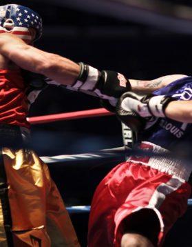 Boxers Boxe Pugilato